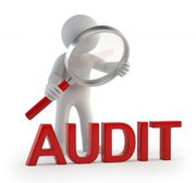 Предоставлю аудиторские и бухгалтерские услуги. Аудитор